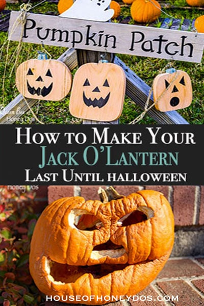 How To Make Your Jack O' Lantern Last Until Halloween -pin